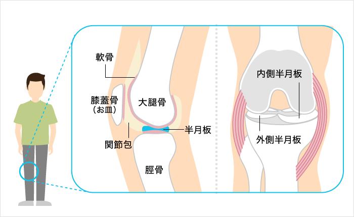 膝の痛みを治す マッサージ