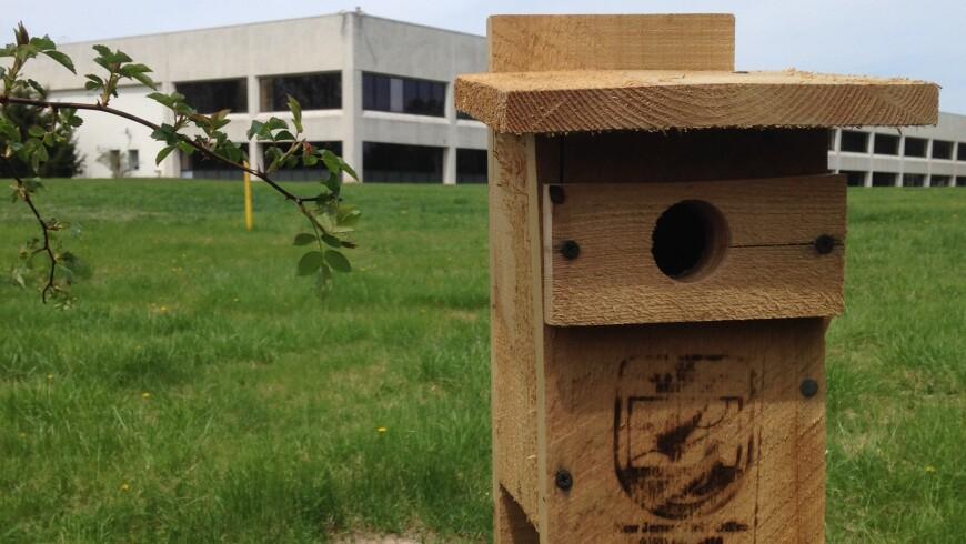 A birdhouse at Johnson & Johnson's campus in Skillman, New Jersey