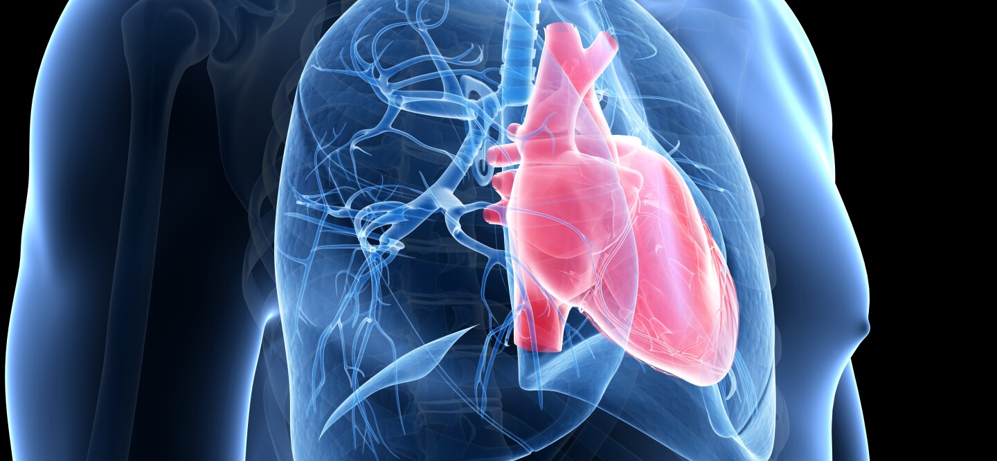 5 Things We Now Know About Pulmonary Arterial Hypertension