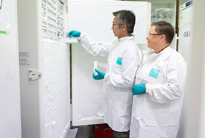 Heather Davis and colleague Antony Chen, Ph.D., Senior Scientist, Janssen R&D, at Janssen's Beerse, Belgium, labs