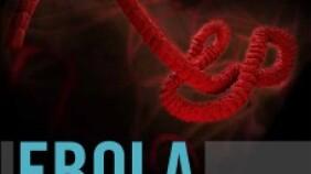 Ebola Nurses.com