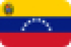 A graphic of the flag of Venezuela