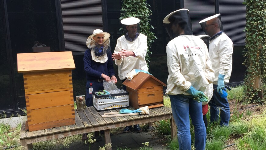 Beekeepers and beehives at the Johnson & Johnson campus in Zug, Switzerland